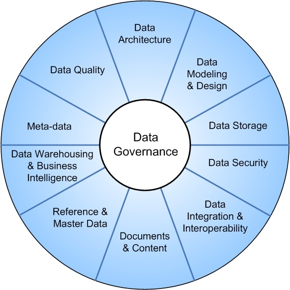 Top Data Governance and Management Company in india